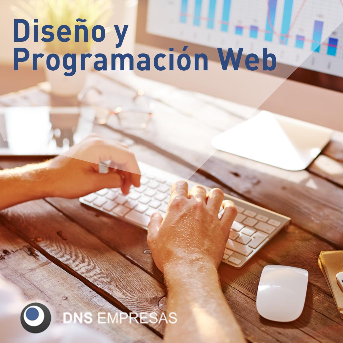 DNS Empresas. Diseño y programación web en Galicia